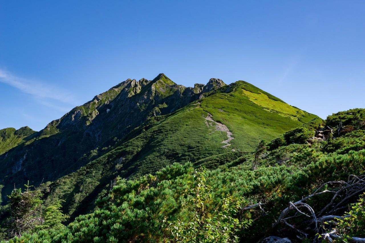 丸山付近から見た西穂高岳