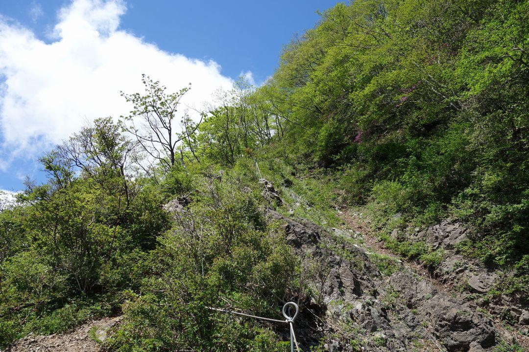 丹沢主稜縦走路のガレ場の登り