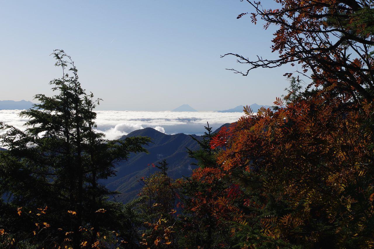 合戦尾根の富士見ベンチから見た富士山