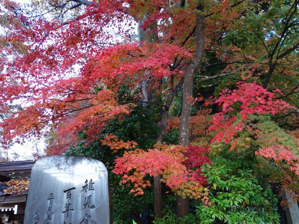 ケーブルカー清滝駅の紅葉