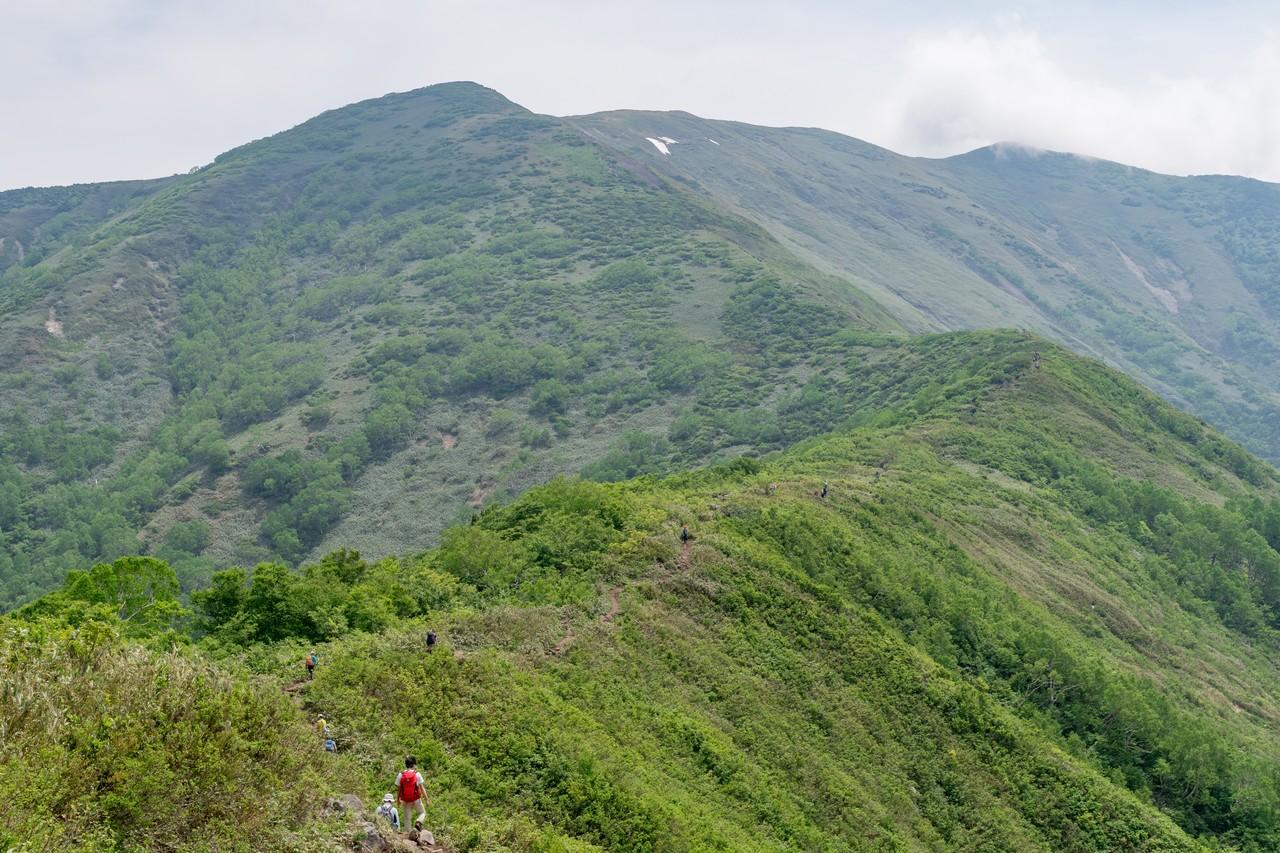 170624仙ノ倉山_032
