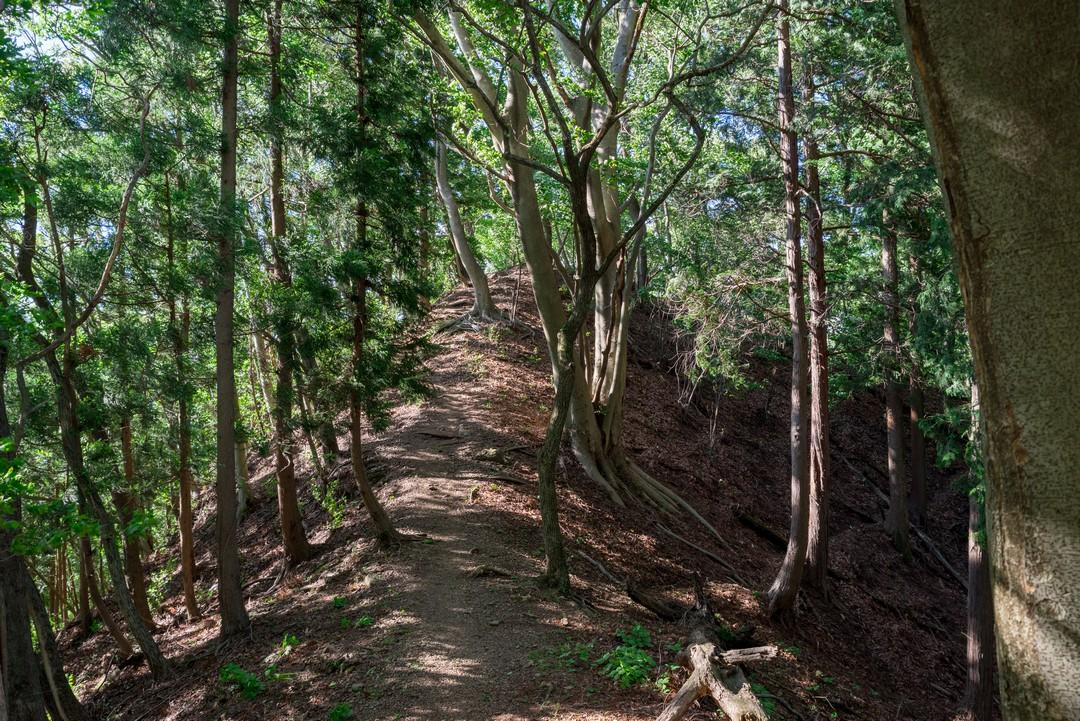190616武川岳_093