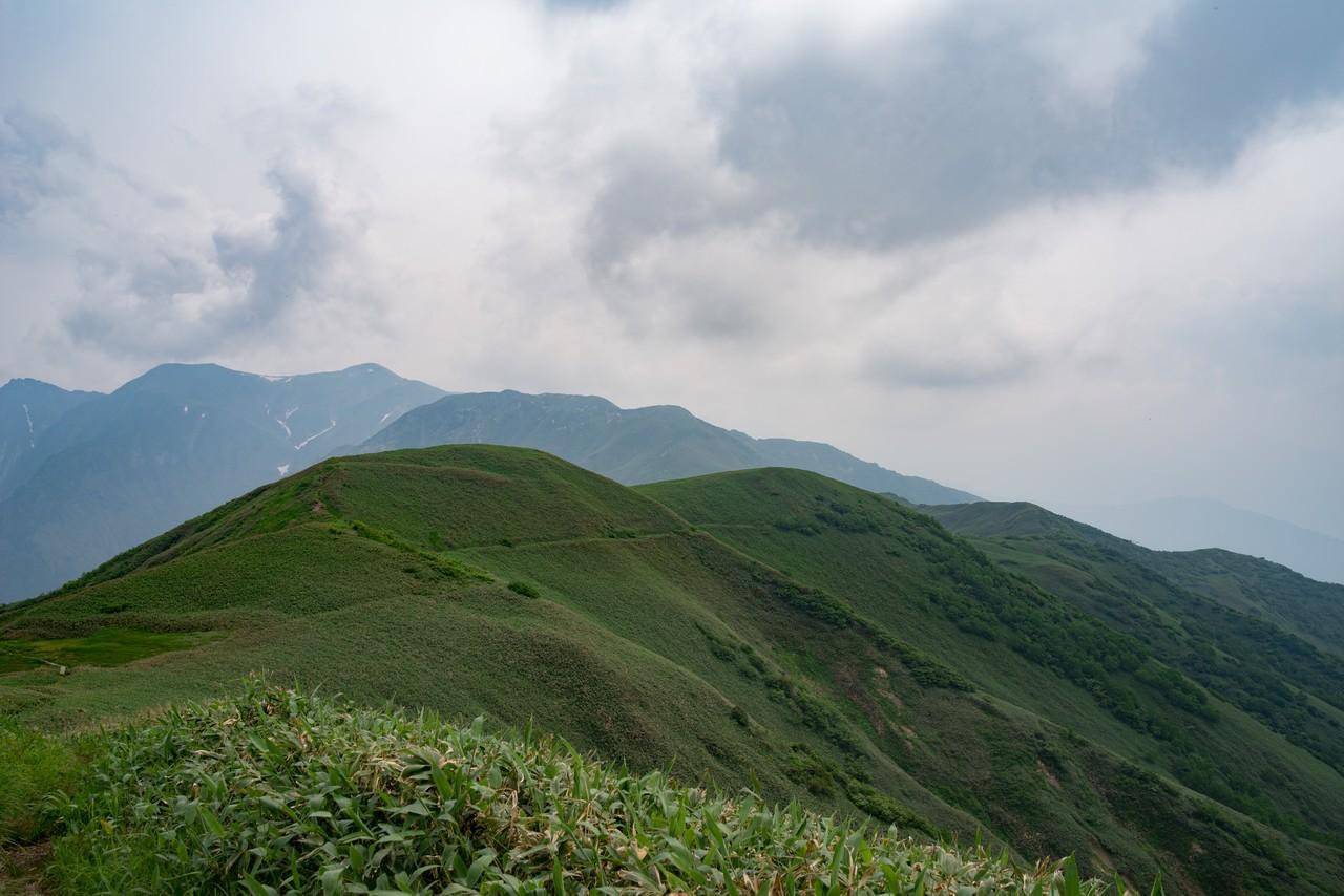 七ツ小屋山の稜線