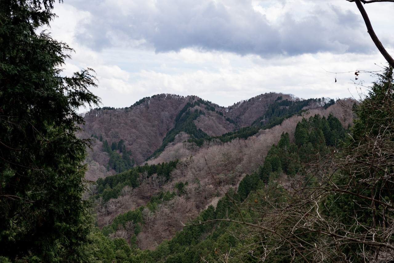 190331ミツバ岳_071