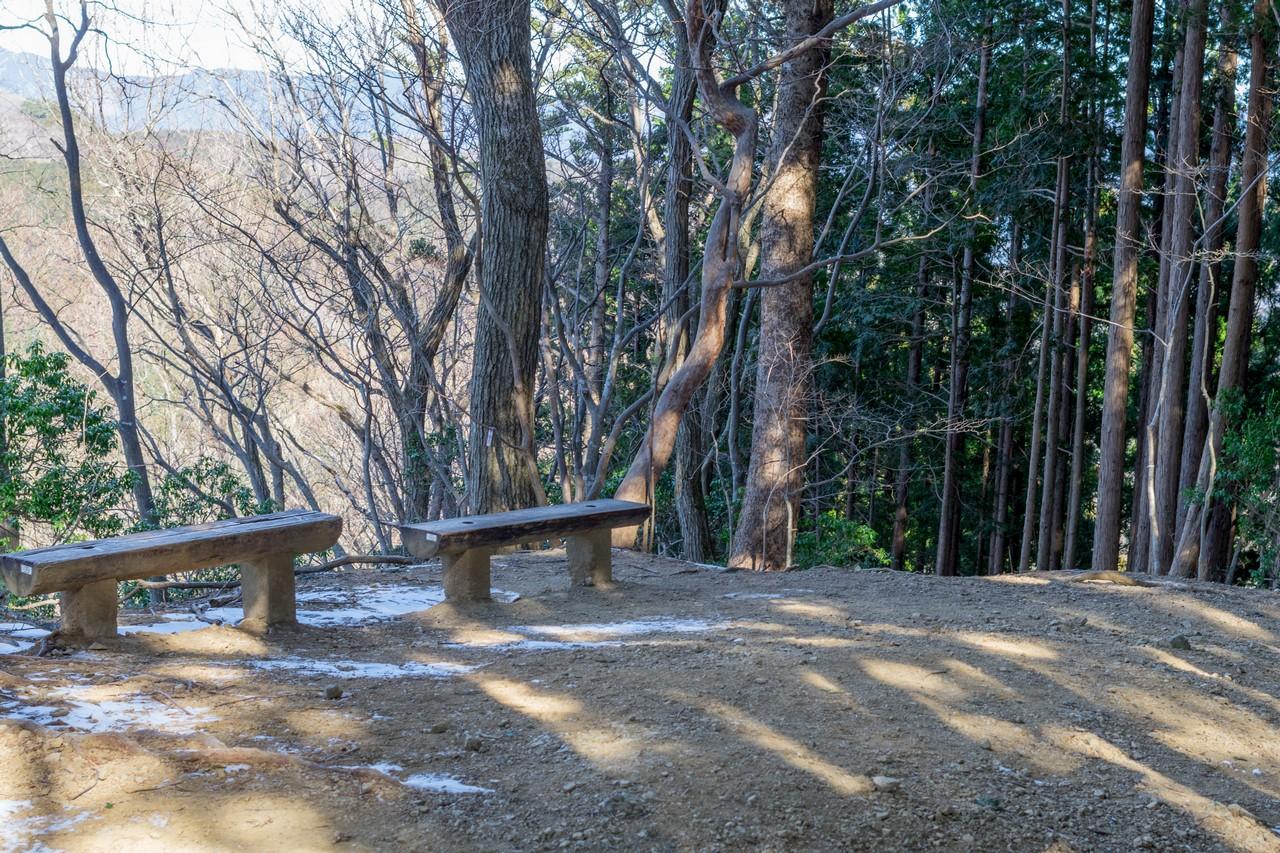 170219伊豆ヶ岳_074
