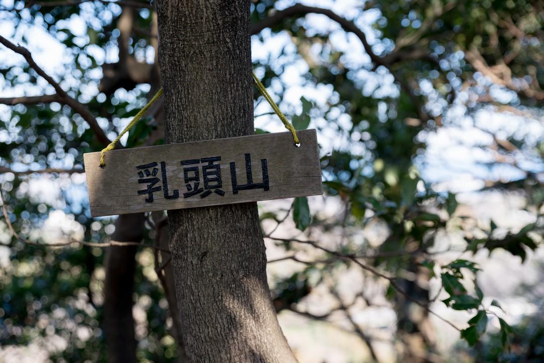 190309三浦アルプス_060