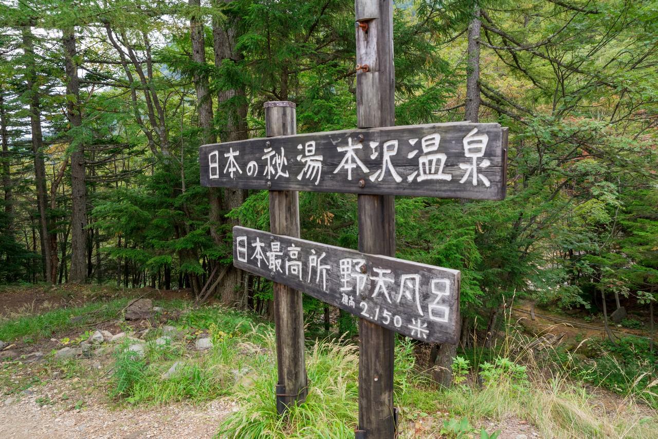 190928天狗岳_099