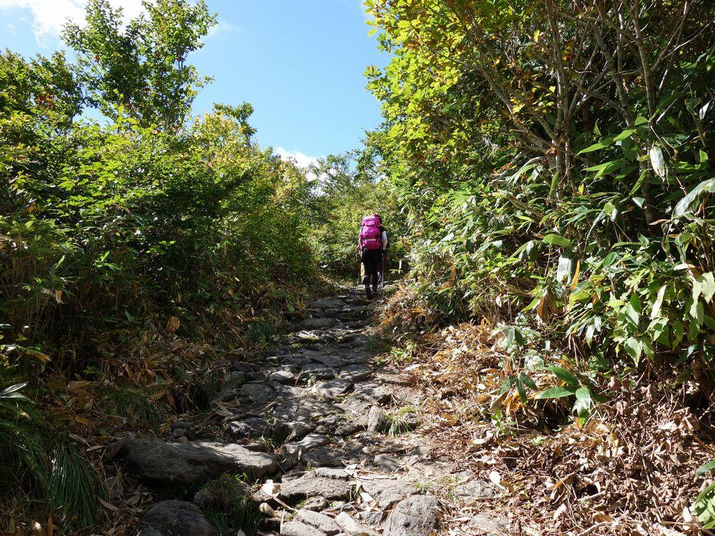 栗駒山中央コースの石畳