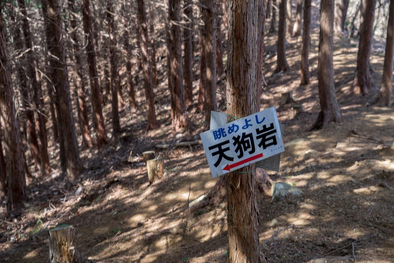 200321九鬼山_089