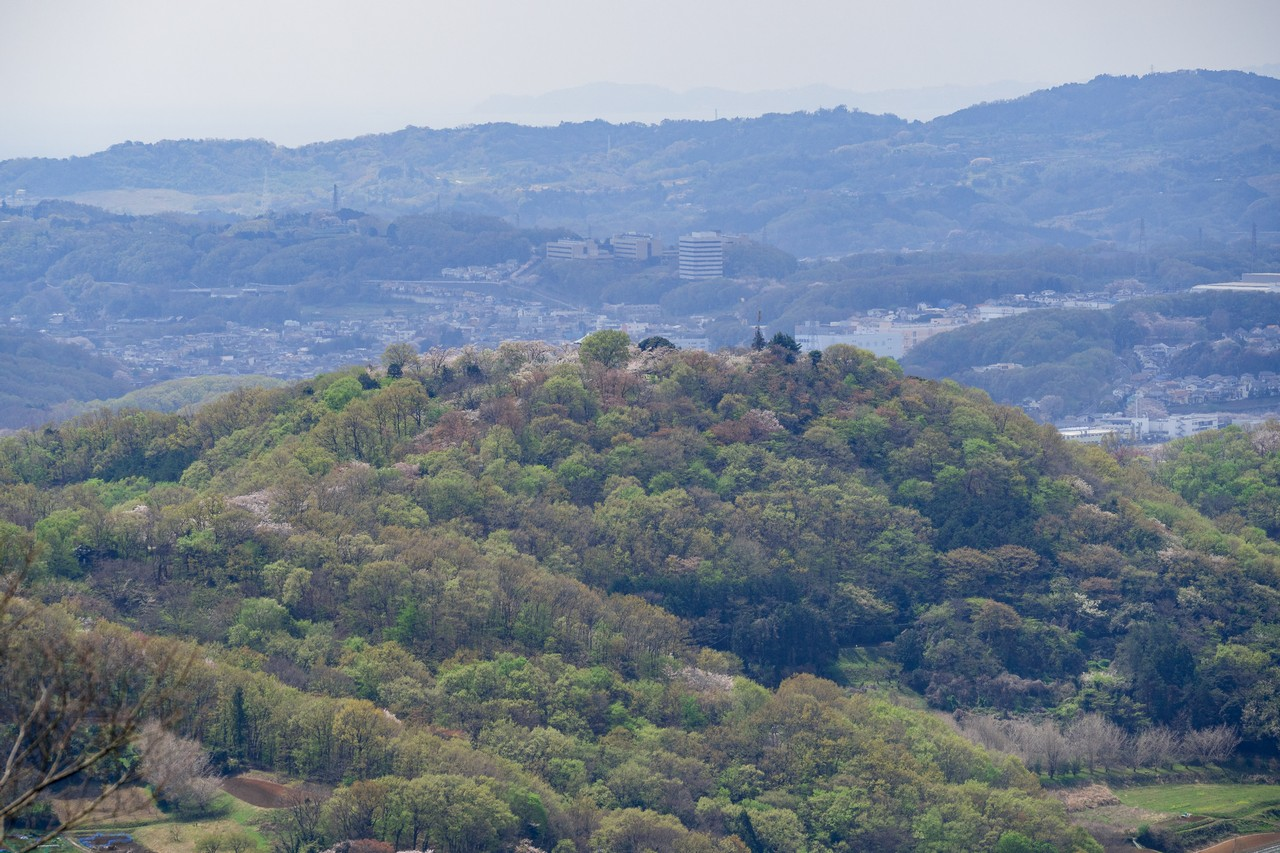 200405高取山_073
