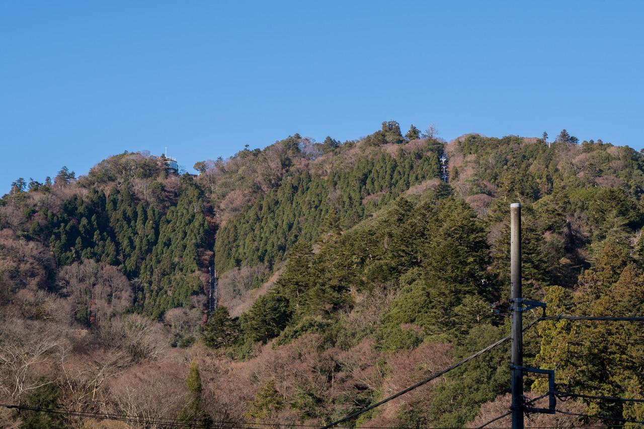 181224南高尾山稜_010