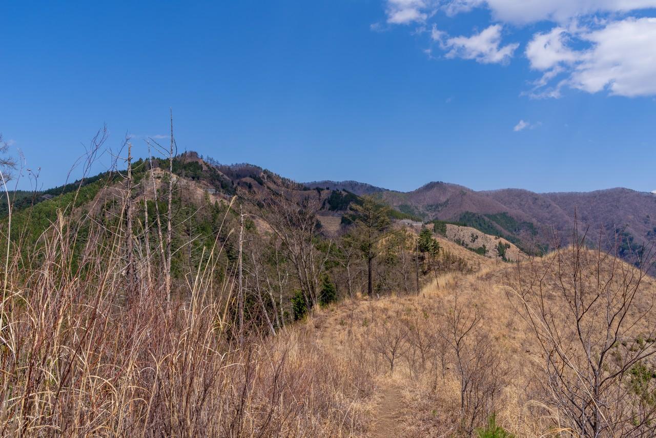 180408甲州高尾山_067
