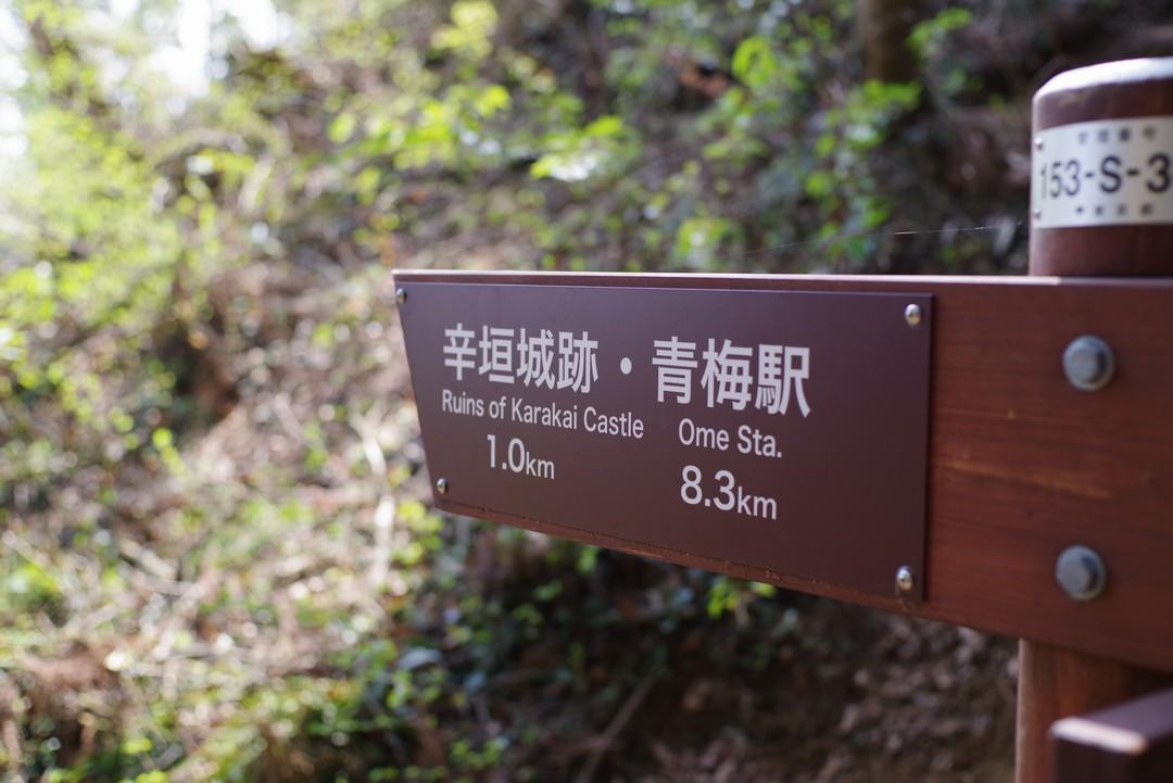 190407青梅丘陵_031