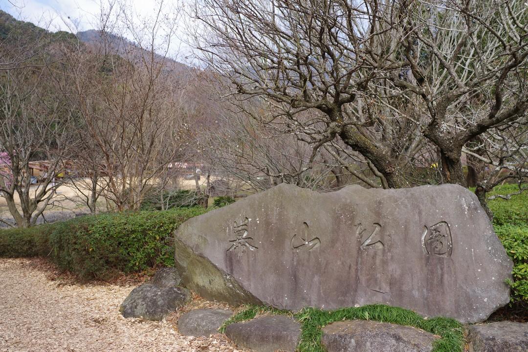 190223幕山_015