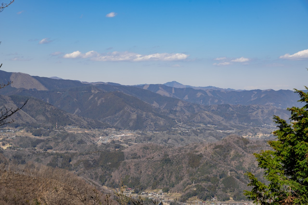 190324倉岳山_067