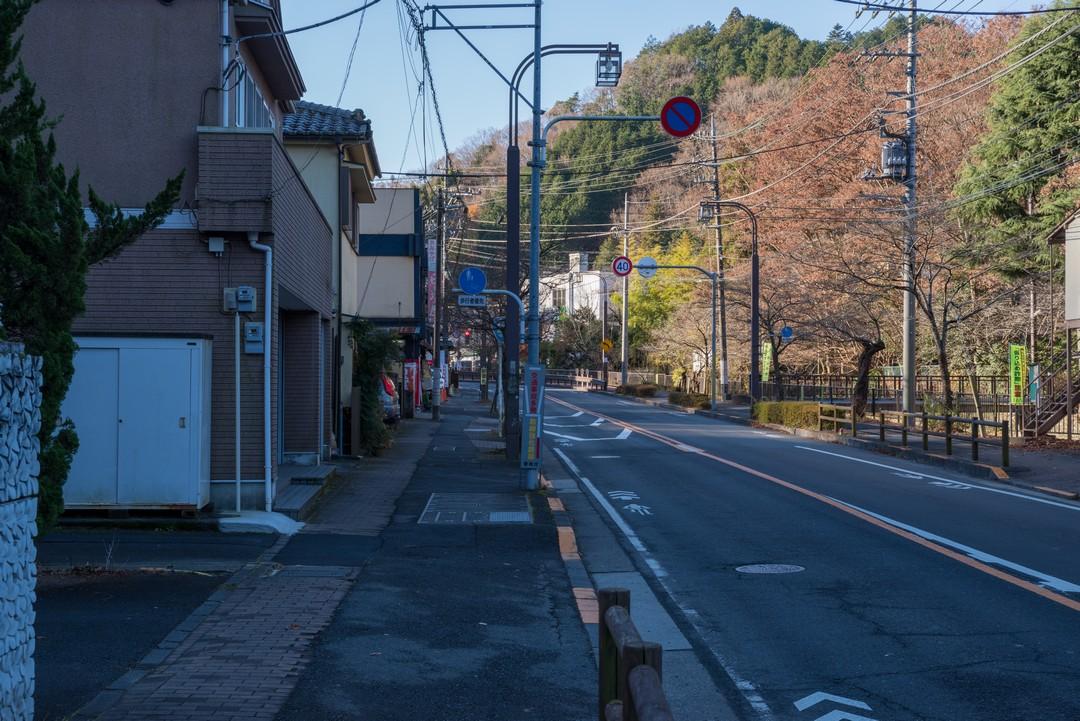 181224南高尾山稜_006