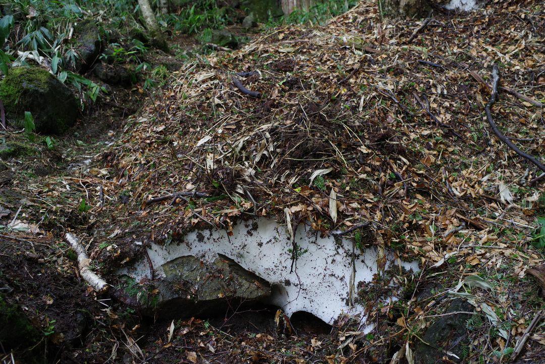 焼岳 登山道上に残った雪の固まり