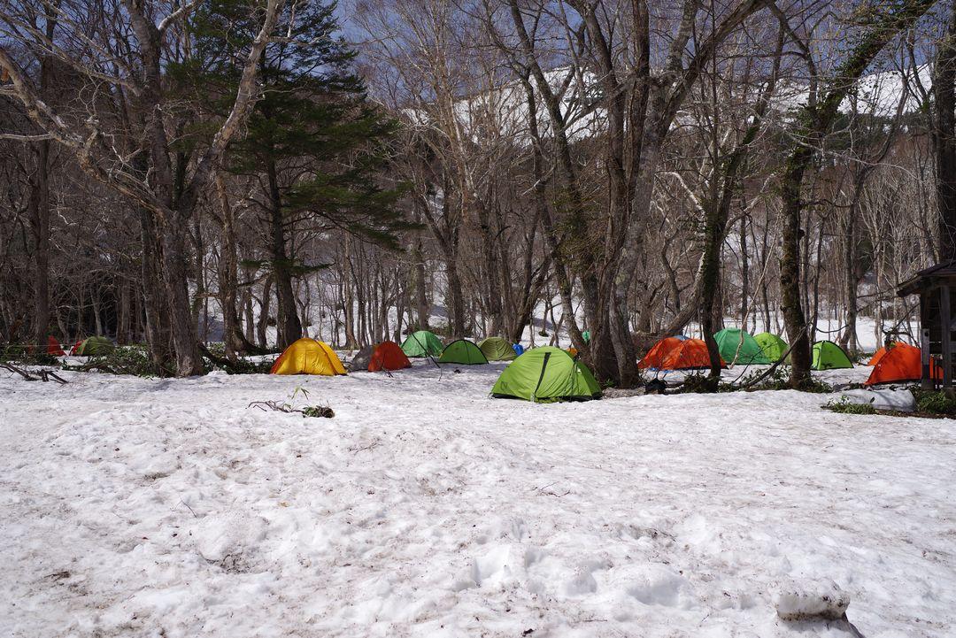山の鼻のテント場