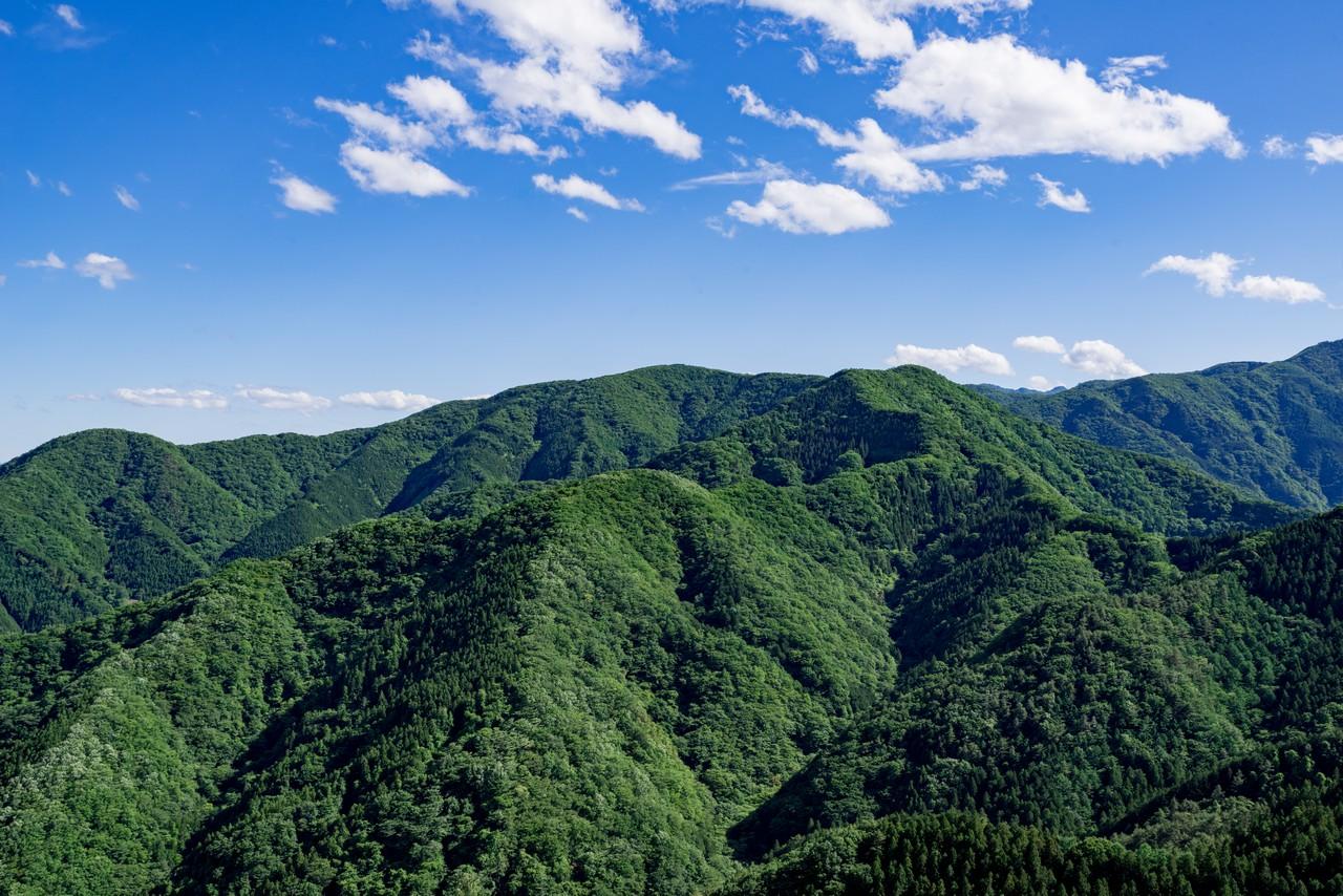 二子山から見た武川岳