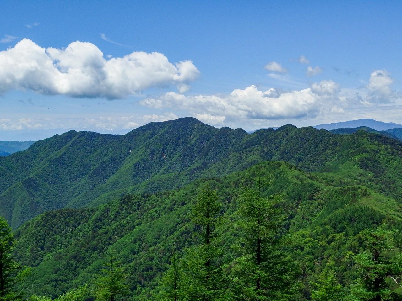 雲取山から見た飛竜山(大洞山)