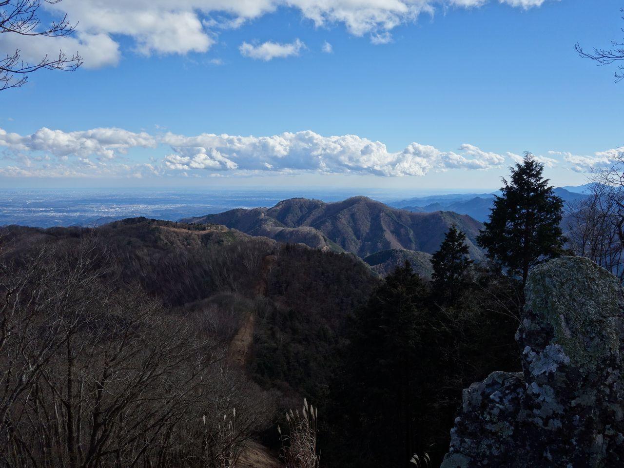 蕎麦粒山から見た川苔山