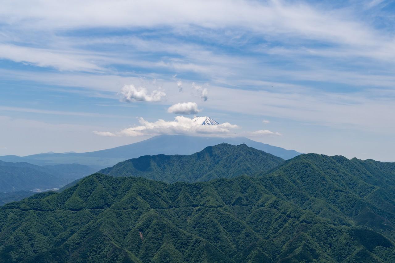 170603滝子山_053_1