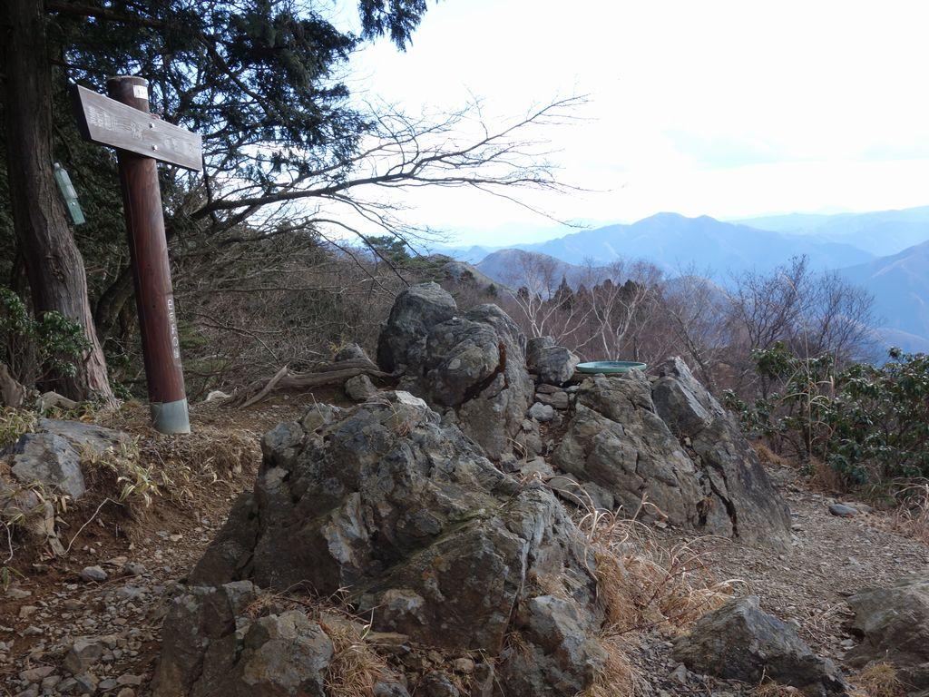 日向沢ノ峰山頂の様子