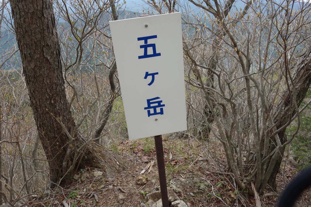 160503十二ヶ岳_023