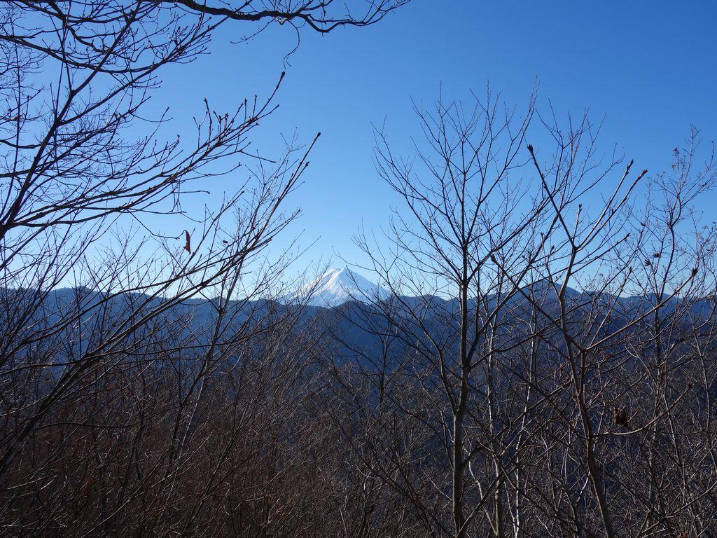 笹子雁ヶ腹摺山の山頂から見た富士山