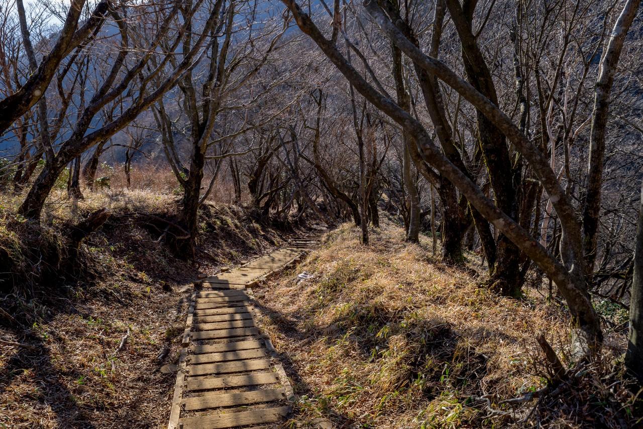 200223塔ノ岳_070