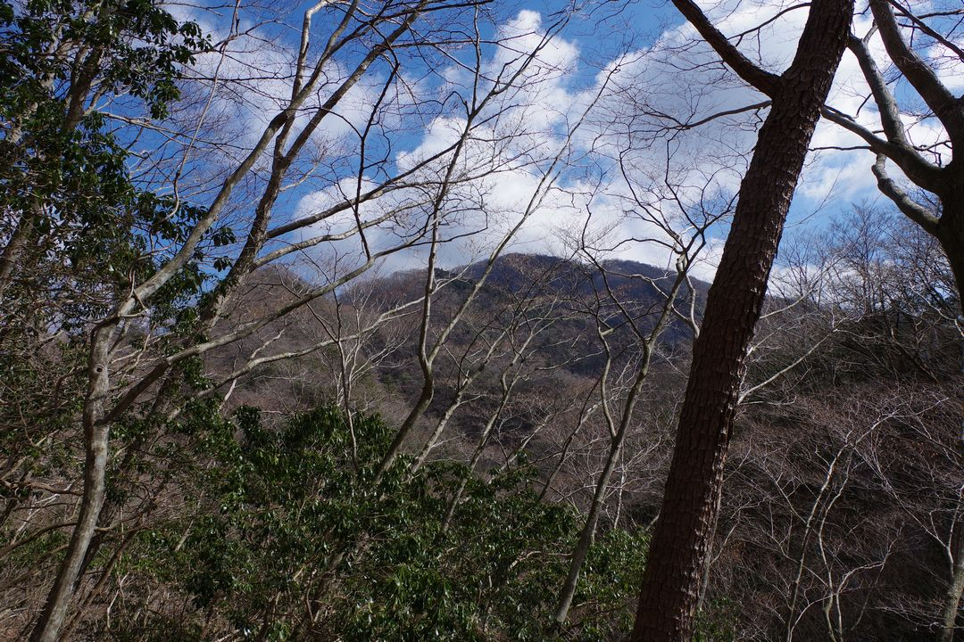 雨山峠から見た鍋割山