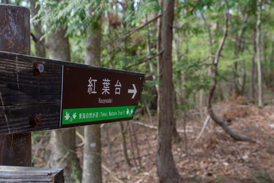 190503三湖台_051