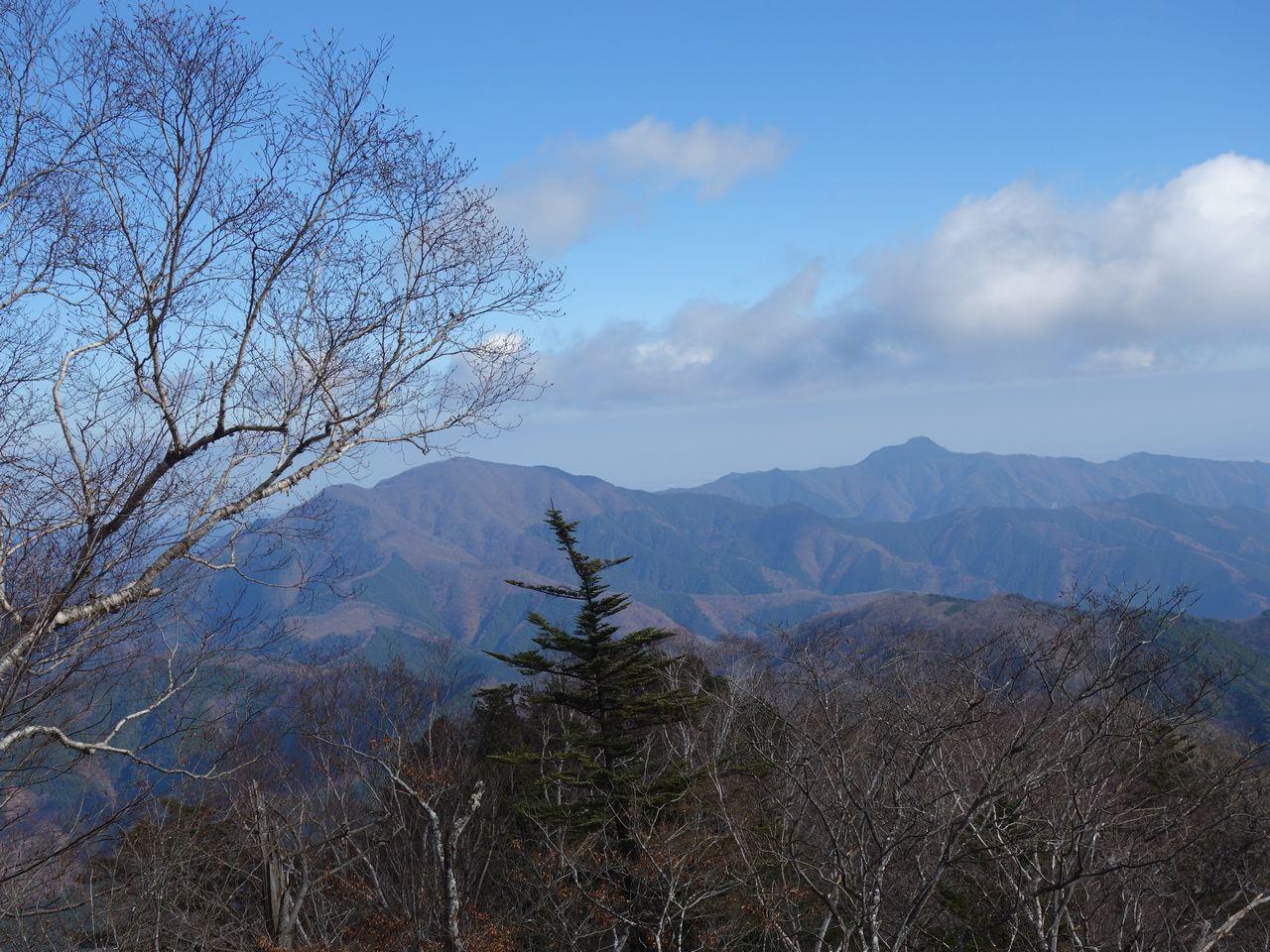 三頭山から見た御前山と大岳山