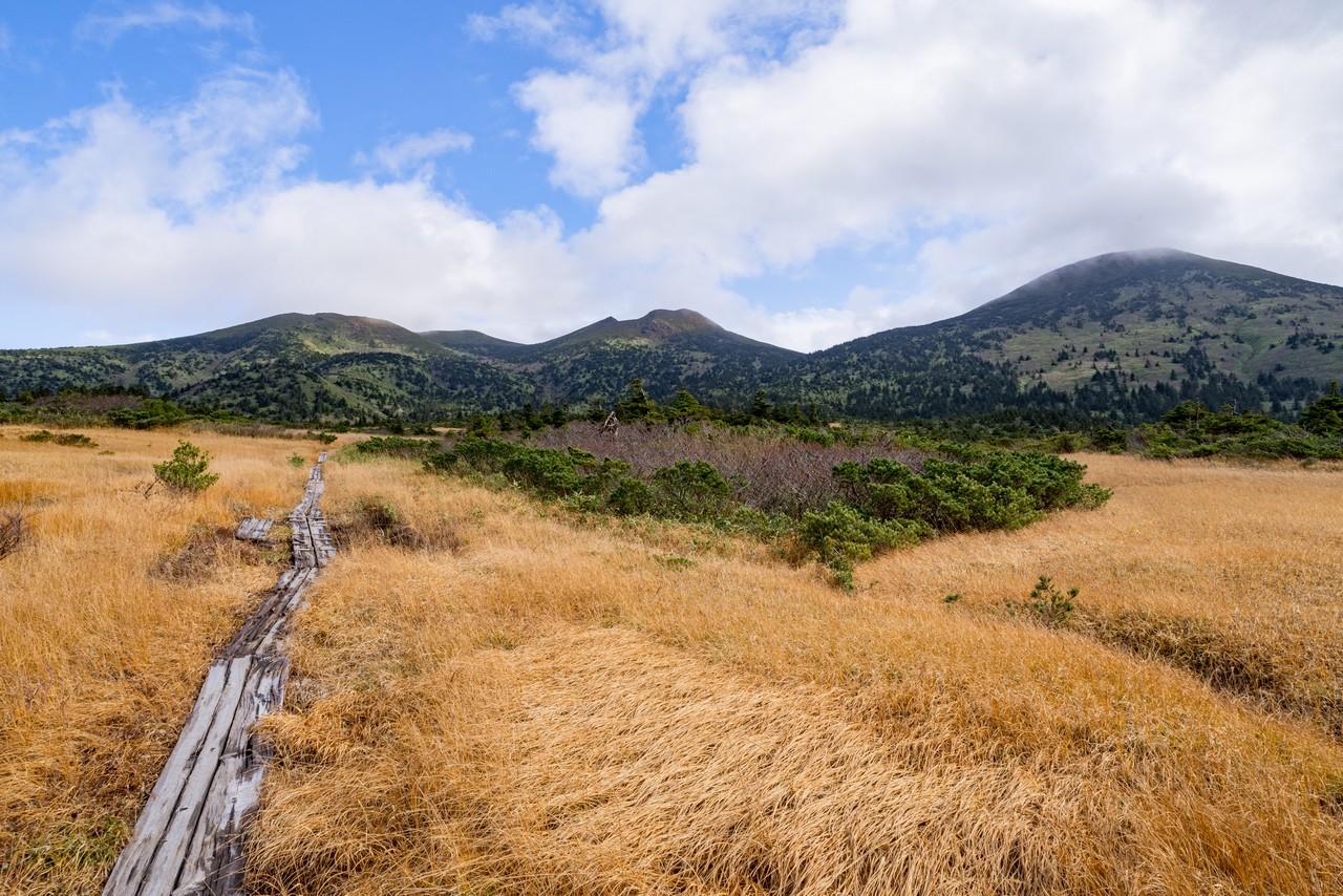毛無岱湿原から見た八甲田山大岳