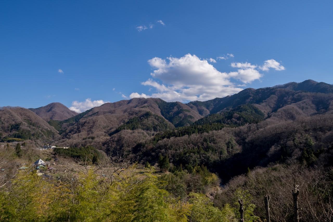 190324倉岳山_086