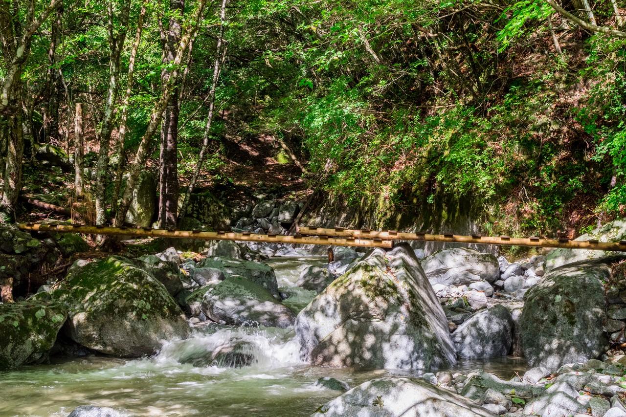 畦ヶ丸の木橋