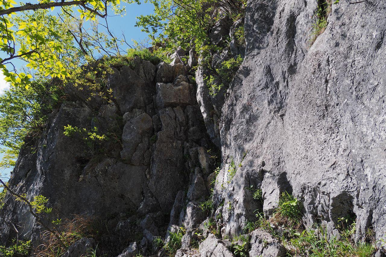 二子山 岩尾根の降下地点にある鎖場