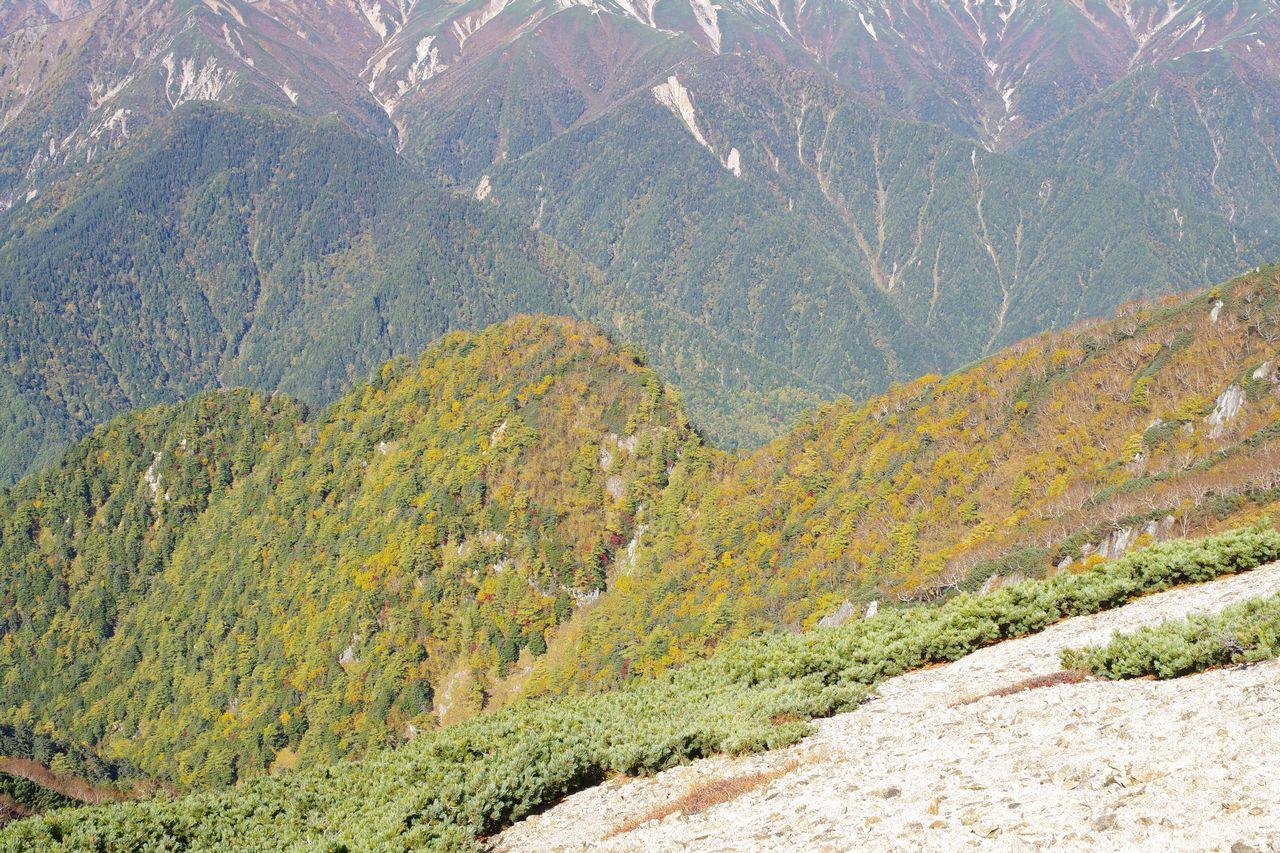 燕岳の紅葉