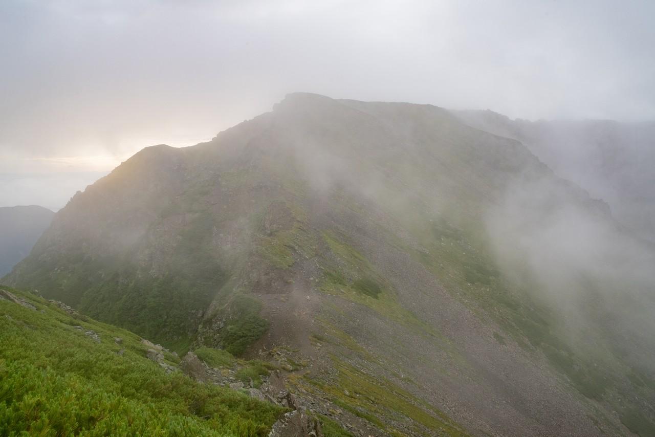 ガスに巻かれた農鳥岳の山頂