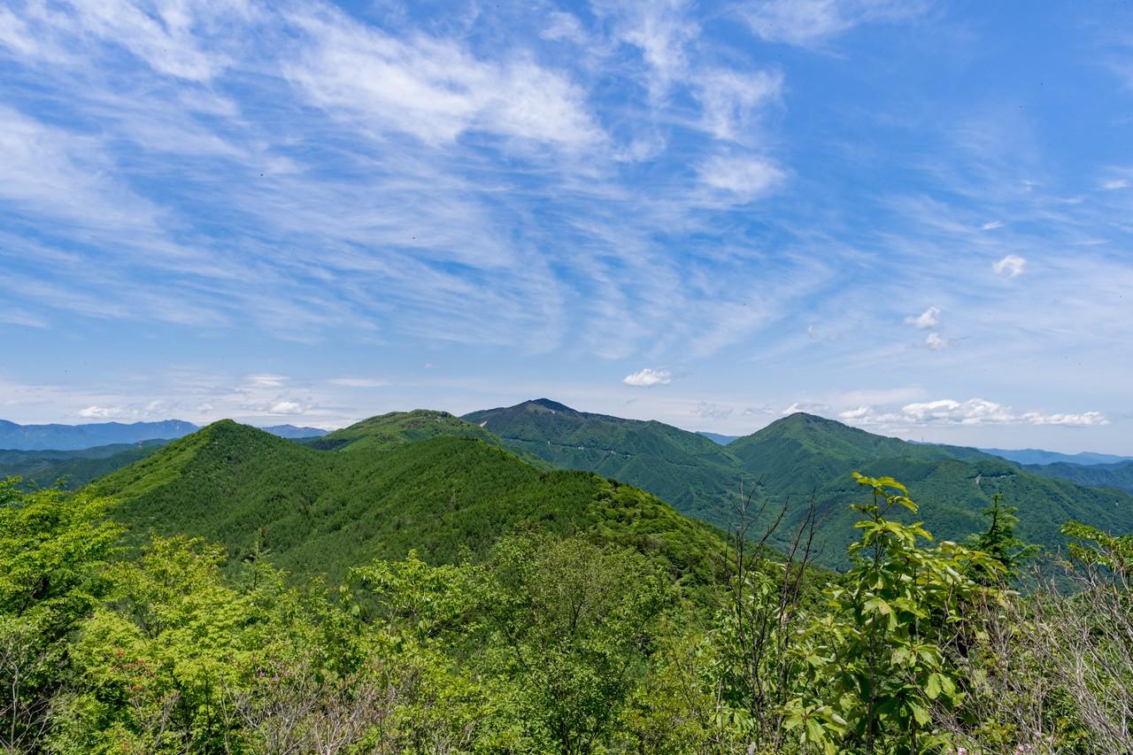 170603滝子山_054