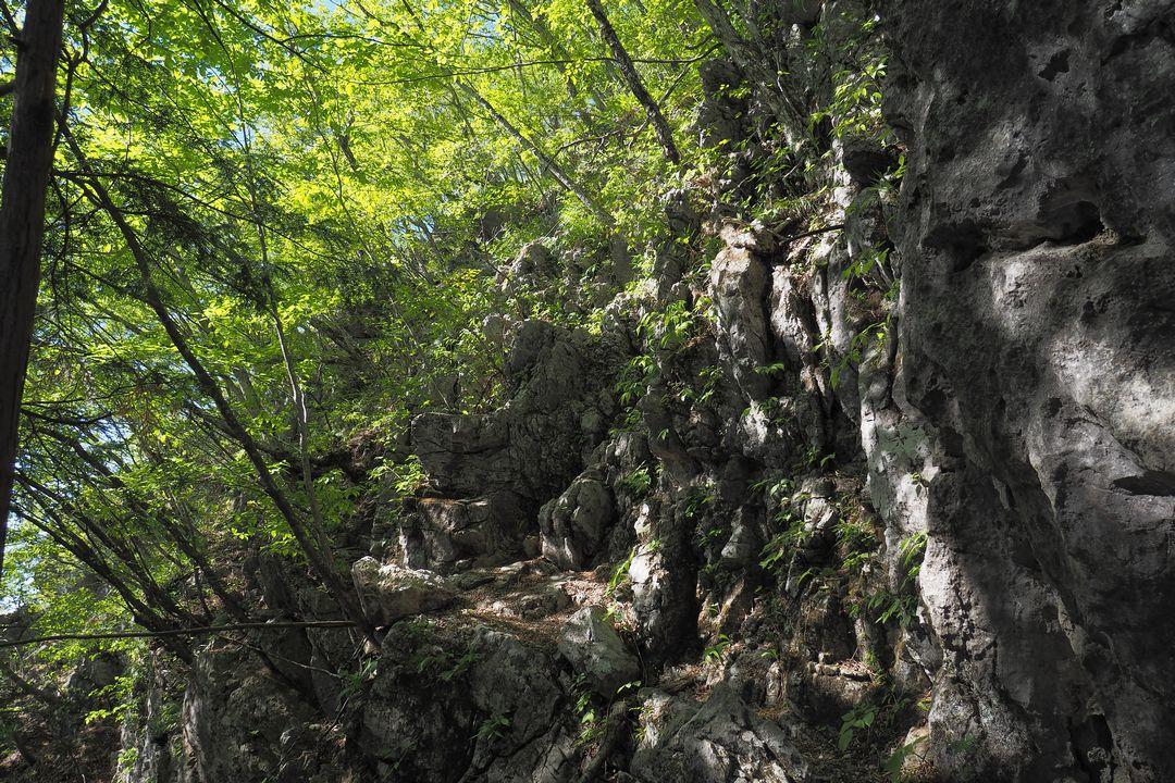 二子山 岩尾根への取り付き地点
