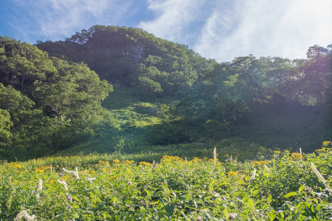 岳沢コースの草付の急斜面