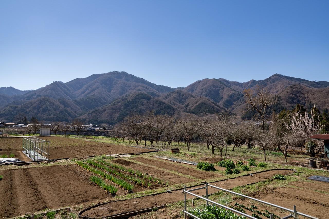 190324倉岳山_001