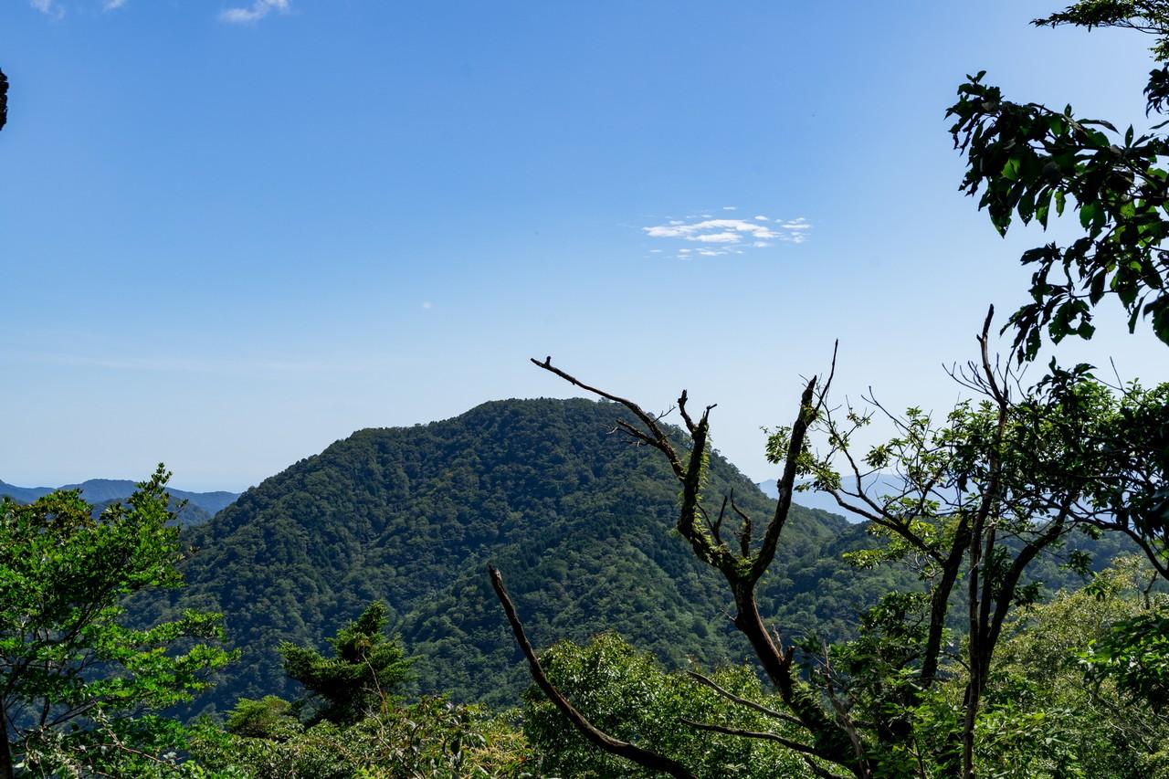 西丹沢 箒沢権現山