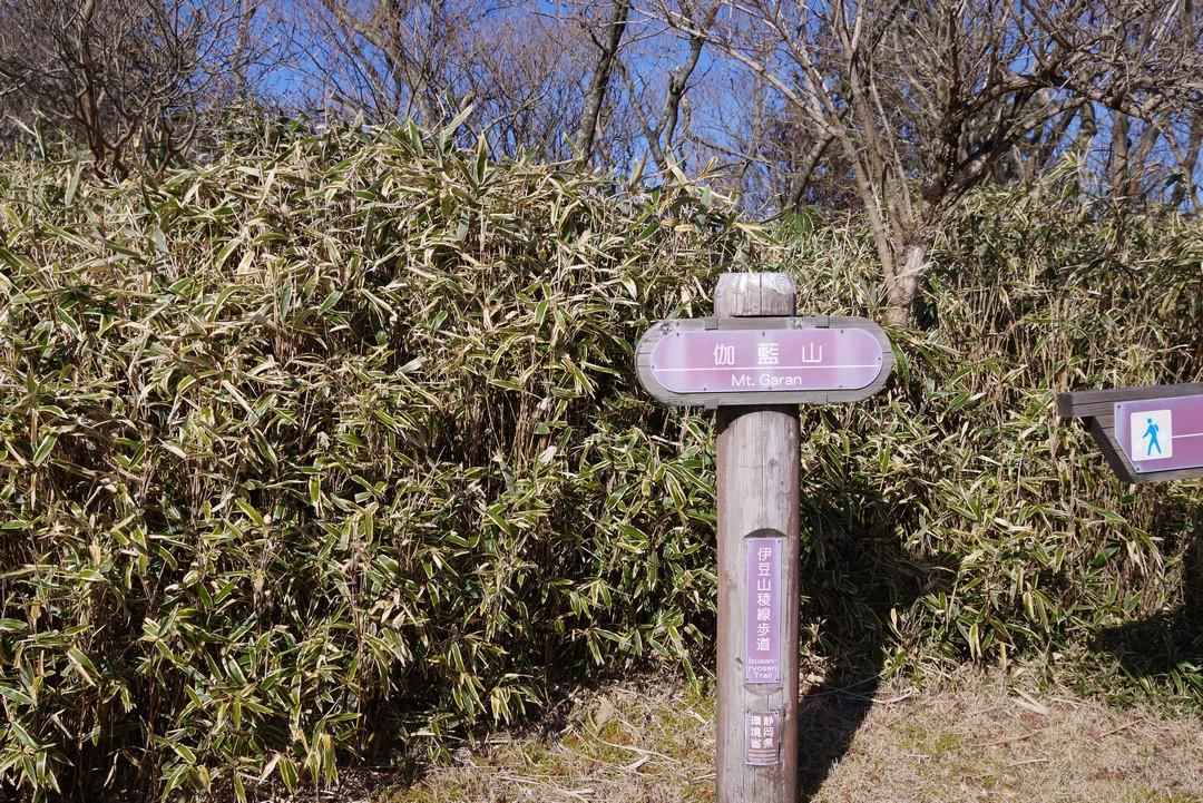 190104達磨山_047