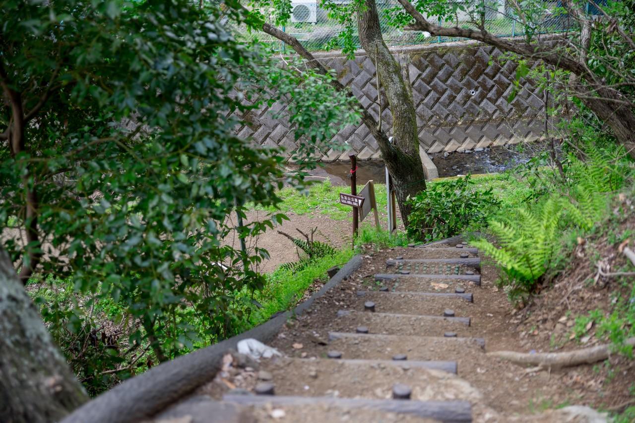 200405高取山_111