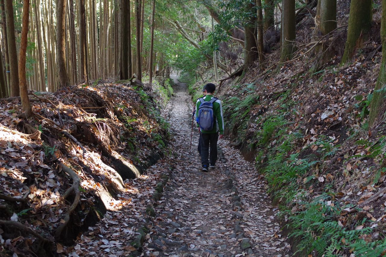 171230蛭ヶ岳_077