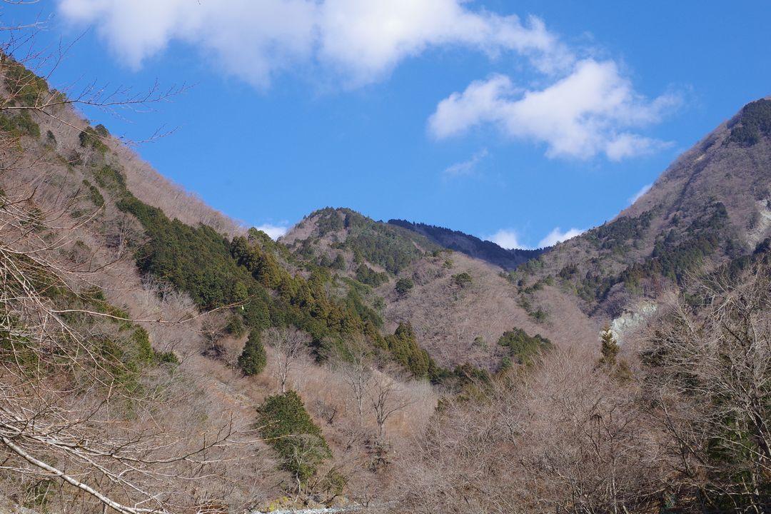 寄沢から見上げた雨山峠