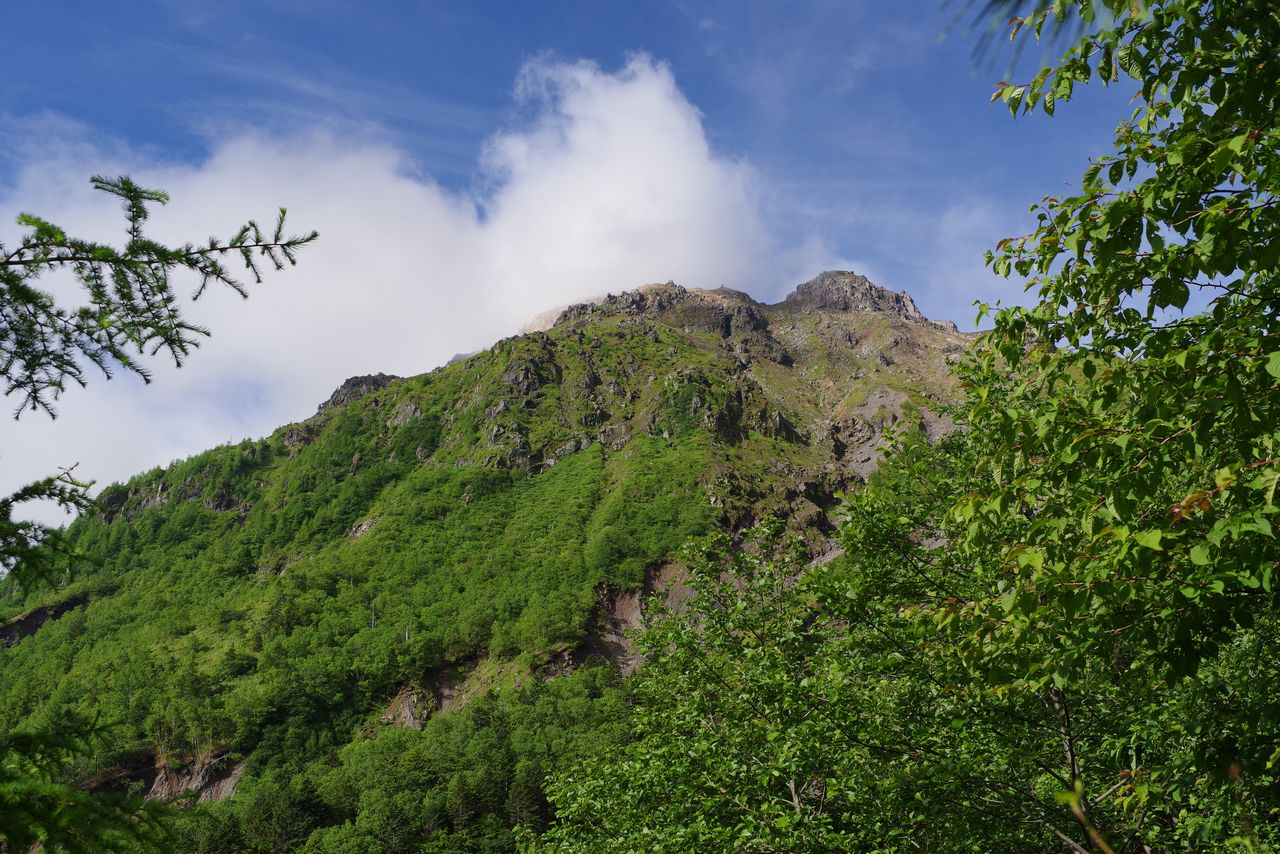 上高地コースから見上げた焼岳
