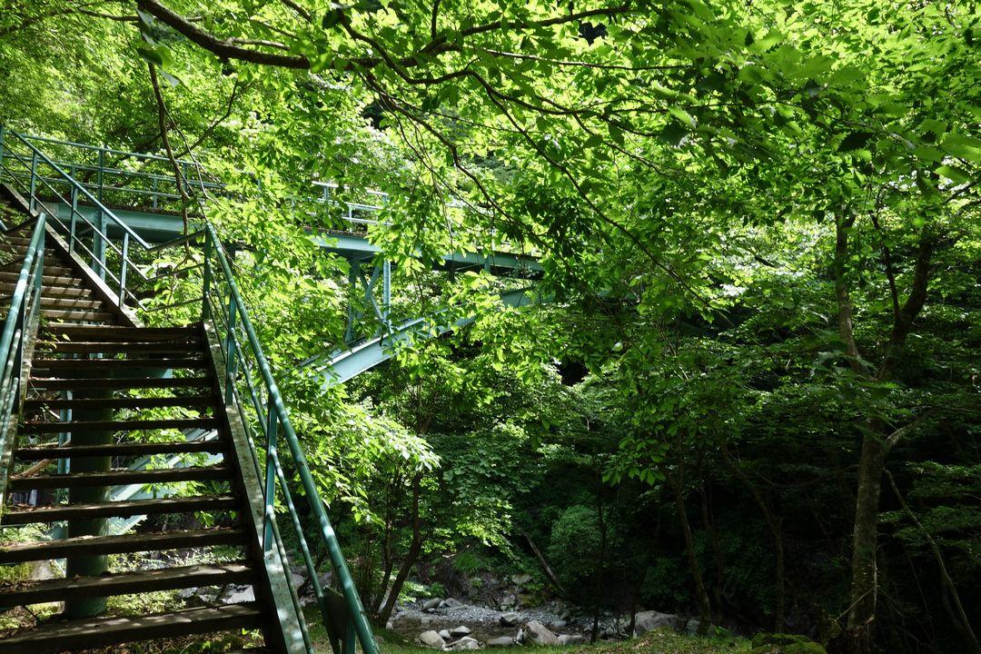 用木沢公園橋